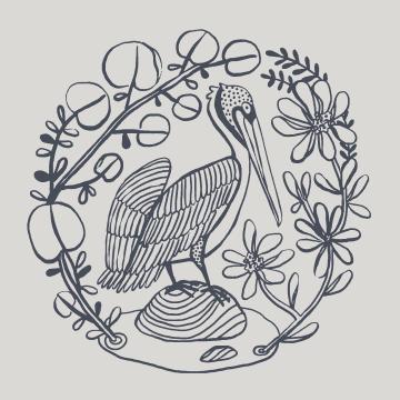 bird line-art